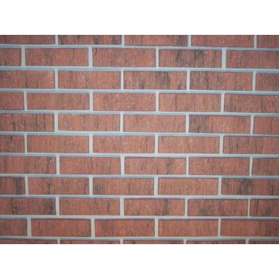 Z-Brick Americana 2-1/4 In. x 8 In. Red Facing Brick